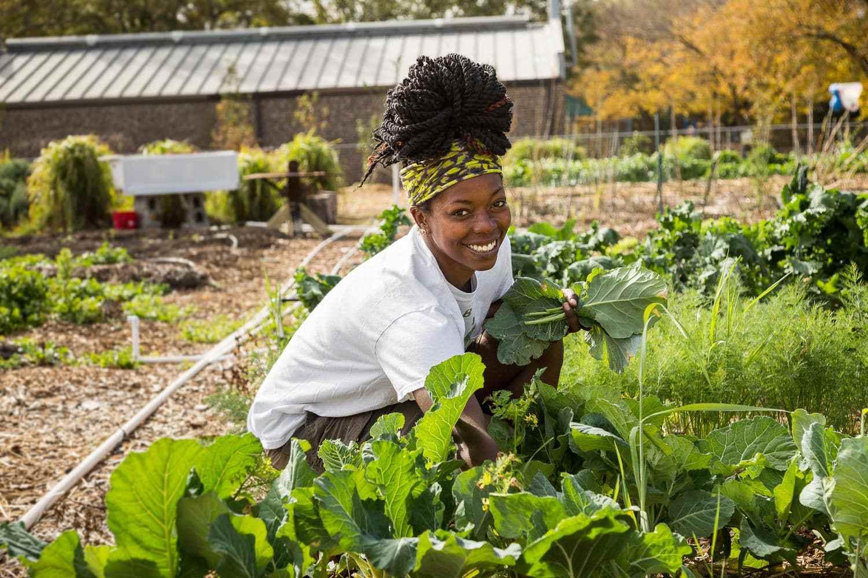 fresh_future_farm-0219